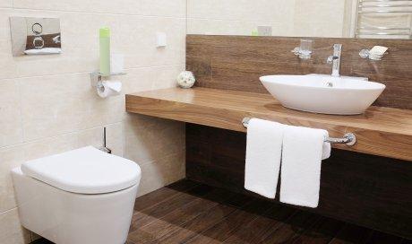 Pose ou remplacement de sanitaire à Dole
